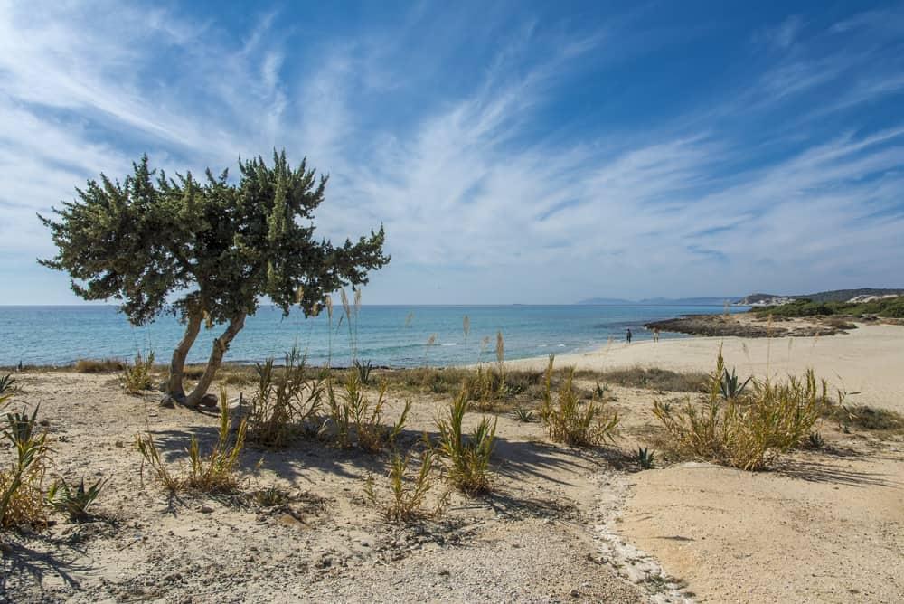 Altınkum plajı Didim