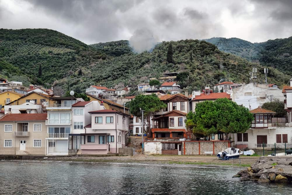 Trilye, Bursa