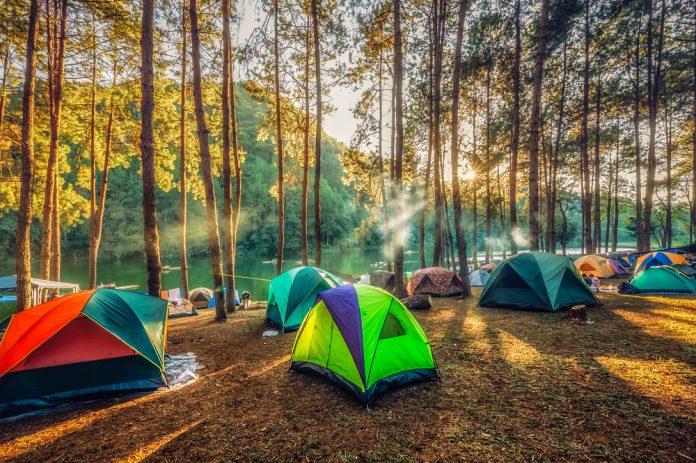 Türkiye'de Kamp