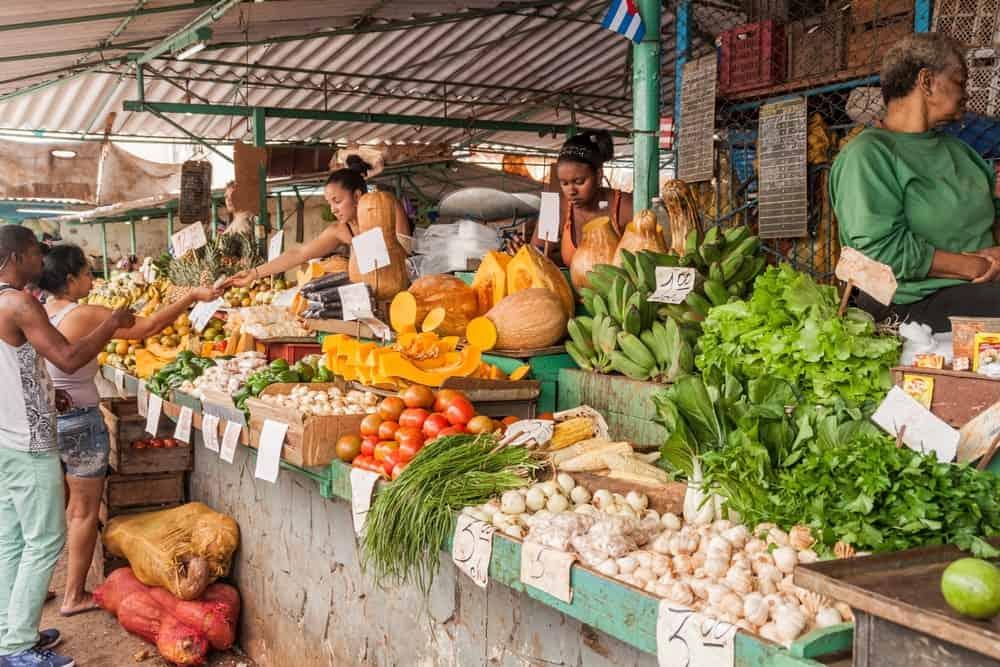 Küba Meyve