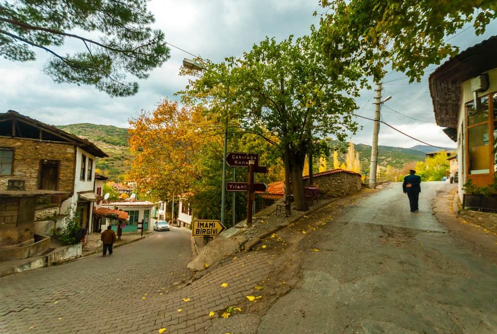Birgi Köyü, Ödemiş