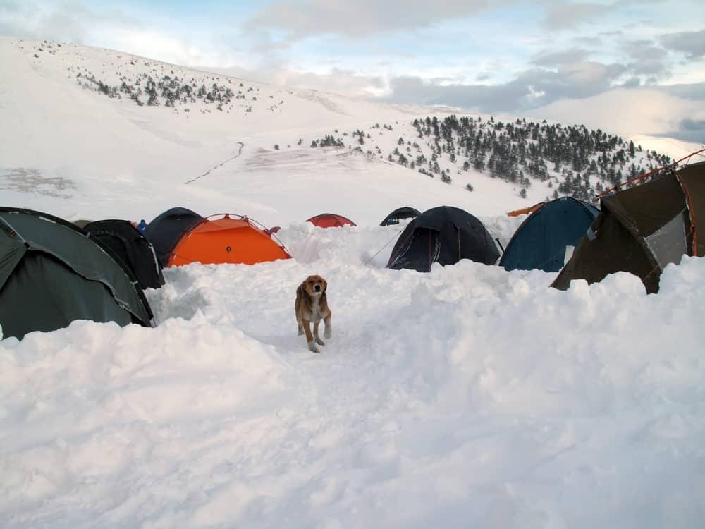 Zigana Dağı Kamp