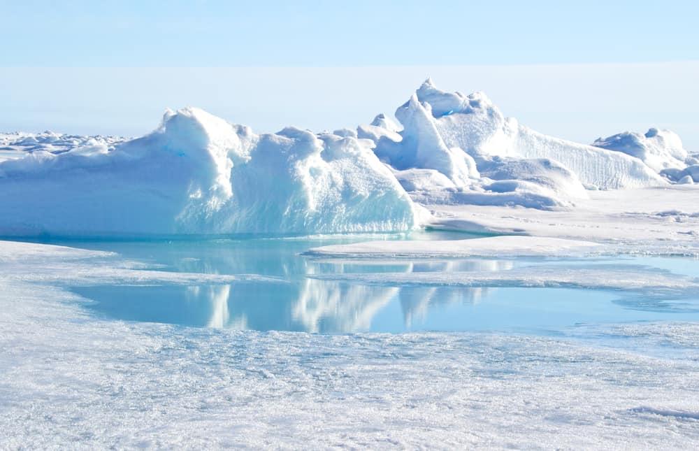 Kuzey kutup noktası