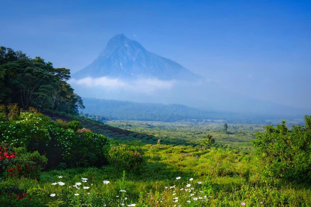 Virunga Dağları
