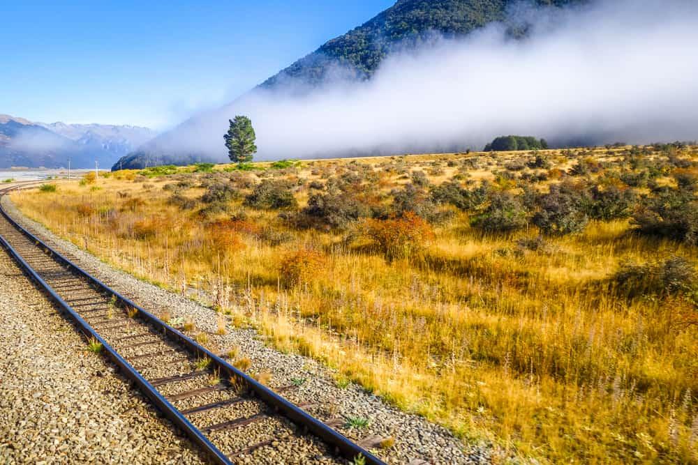 Yeni Zelanda tren