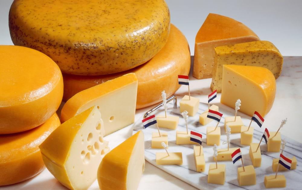 Hollanda Peynirleri
