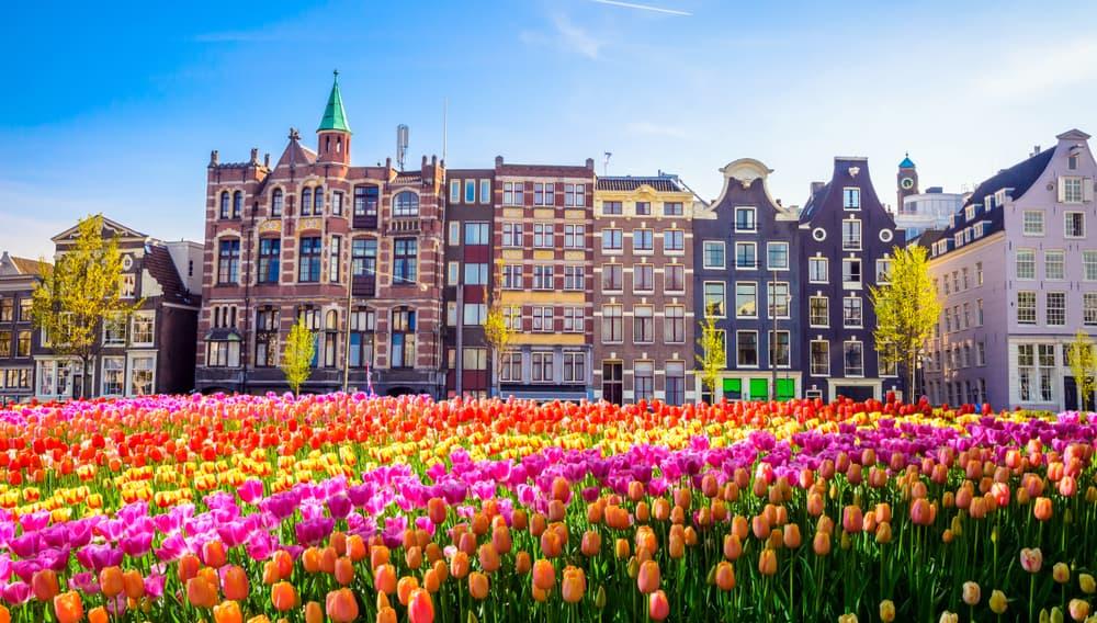 Geleneksel Hollanda Evleri & JordaanAmsterdam