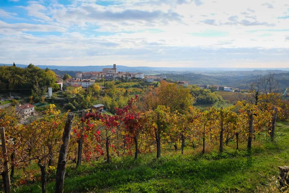 Goriska Brda İtalya-Slovenya
