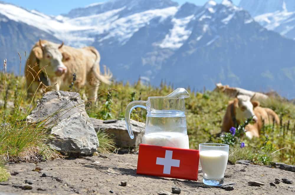 İsviçre Çikolata