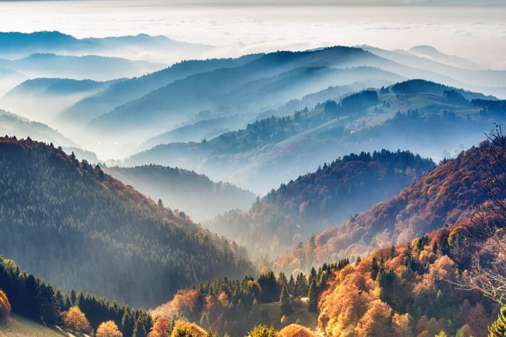 Black Forest, Almanya