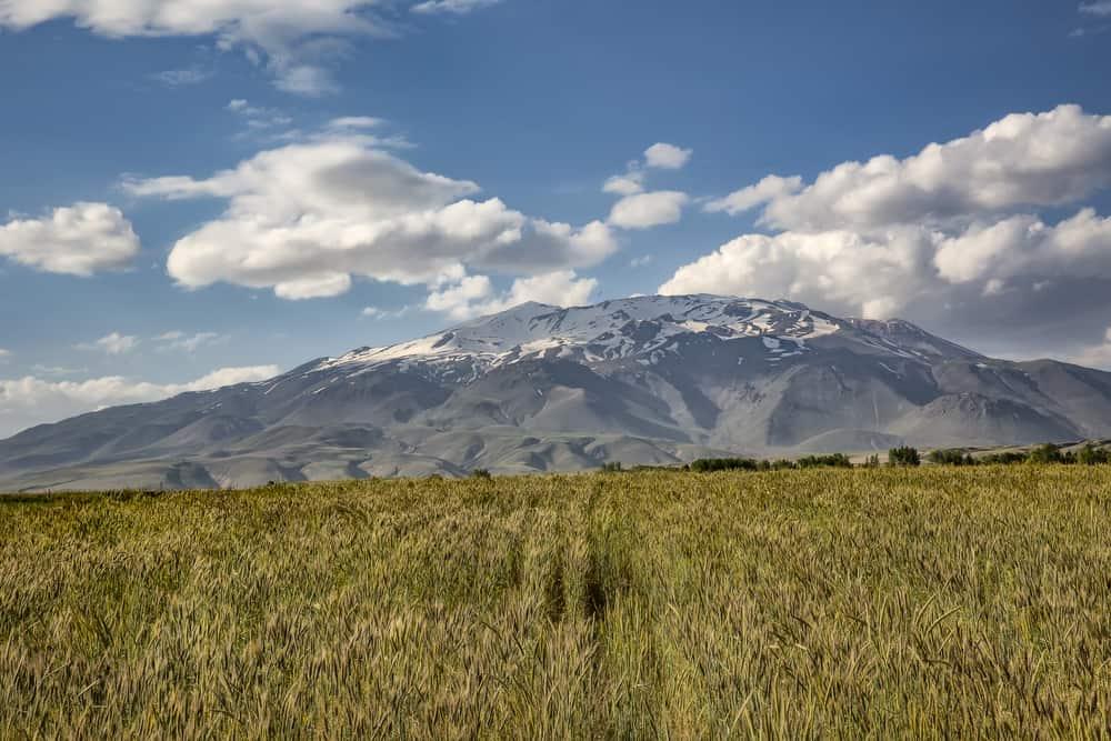 Süphan Dağı Bitlis