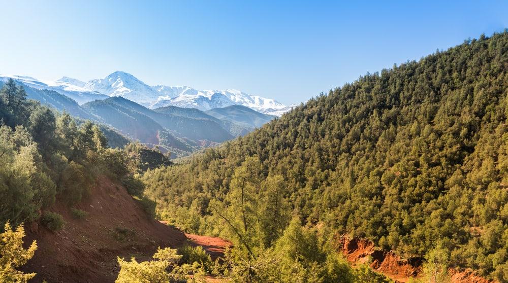 Atlas Dağları-Ourika Vadisi
