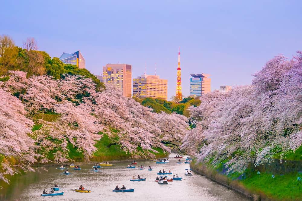 Ueno Parkı, Tokyo, Japonya
