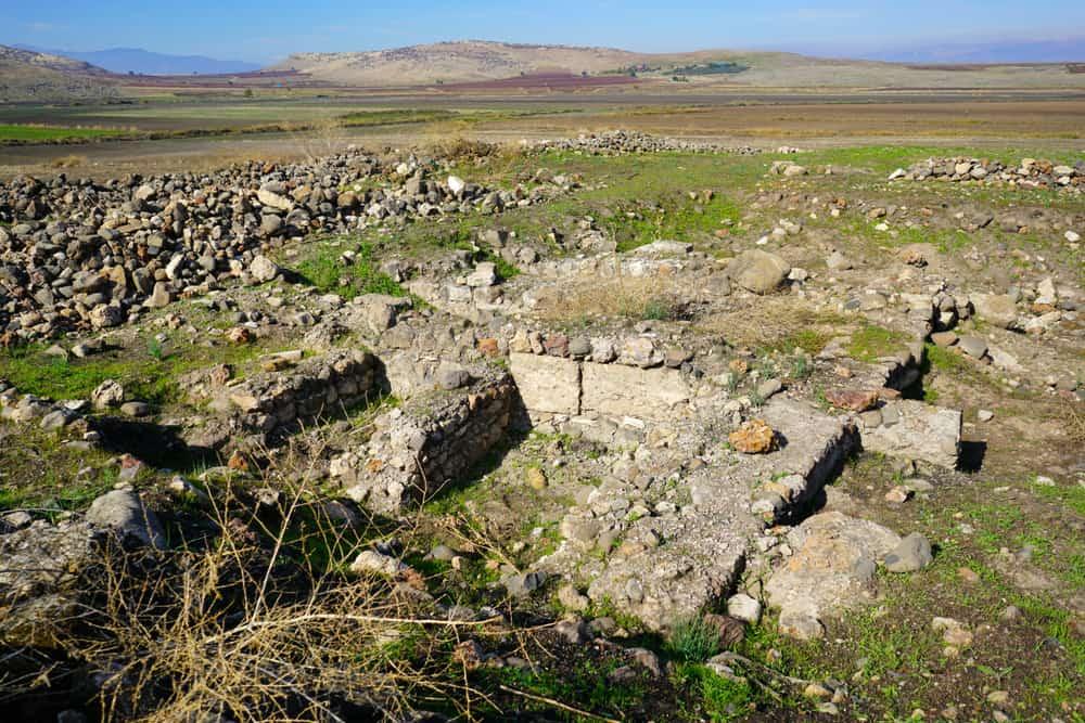 Arkeoloji Müzesi Domuztepe Maraş