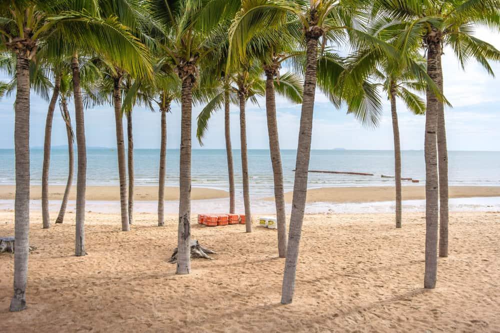 Jomtien Plajı Tayland