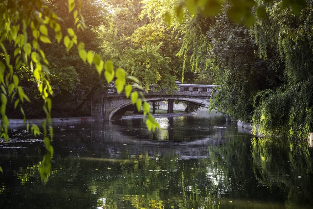 Çeşmeci Parkı (Cismigiu Parkı) Bükreş