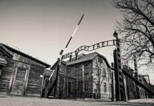 Auschwitz Toplama Kampı Polonya
