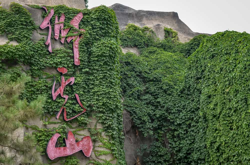 Pekin Hayvanat Bahçesi
