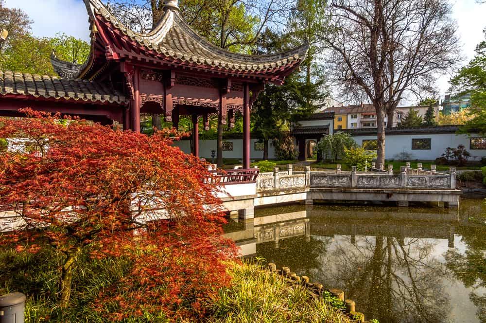 Çin Bahçesi Frankfurt