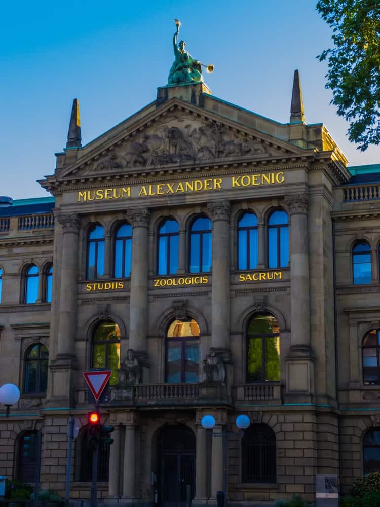 Alexander Koenig Müzesi Bonn
