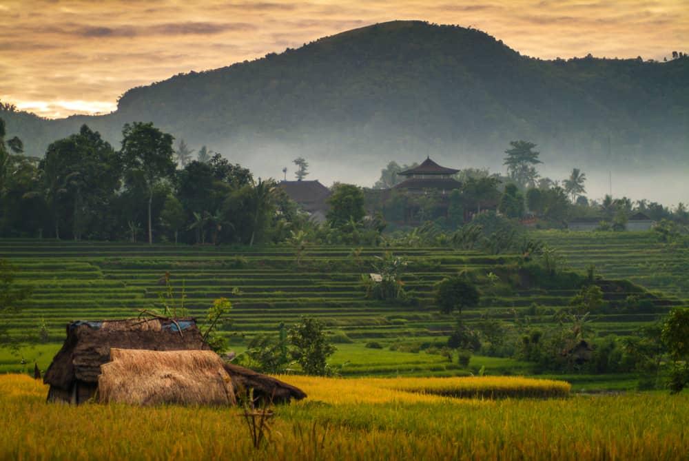 Sidemen Vadisi Bali