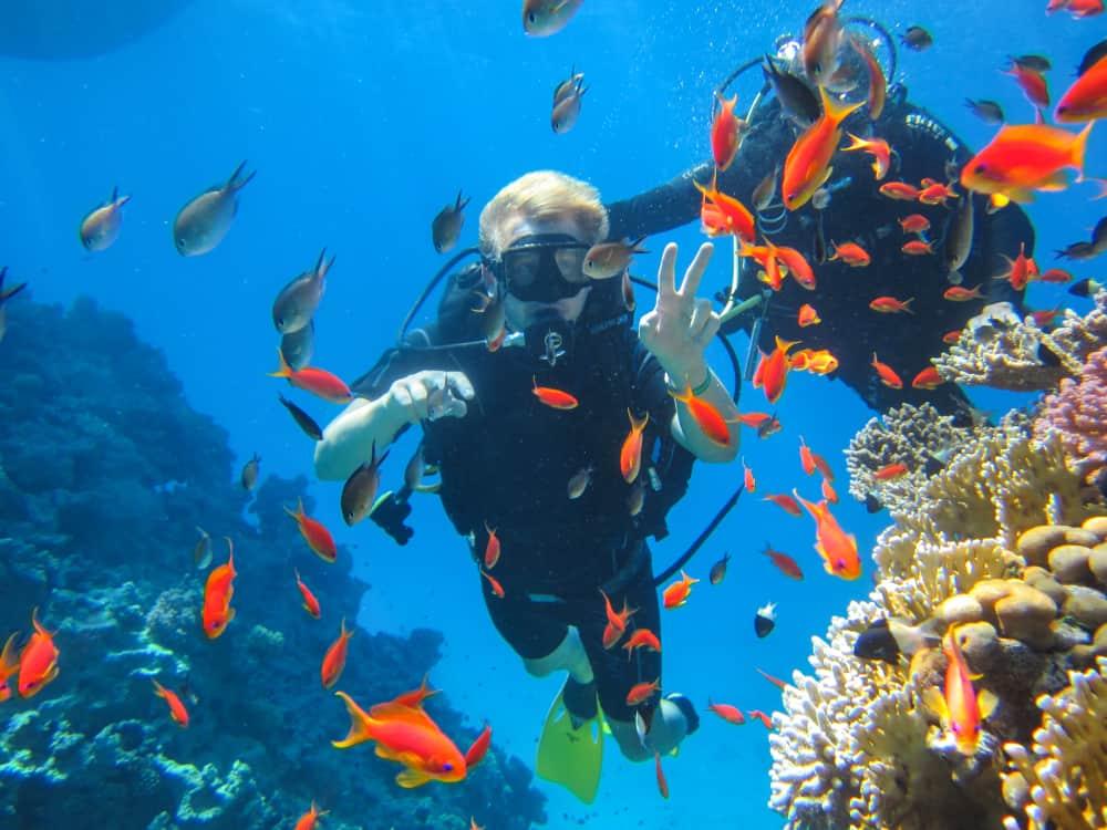 Şarm El-Şeyh Mercan Resifi Dalış