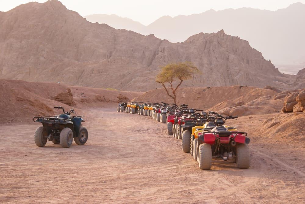 Şarm El Şeyh Safari