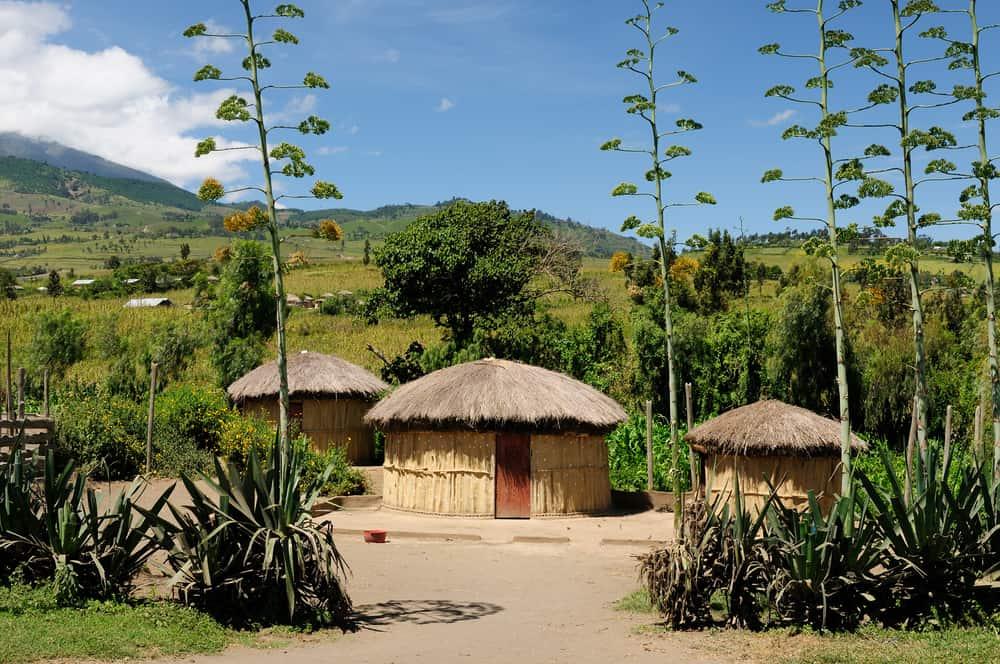 Arusha Tanzanya