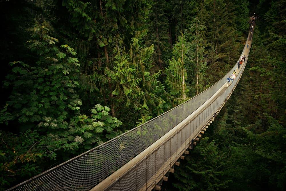 Capilano Asma Köprüsü Vancouver