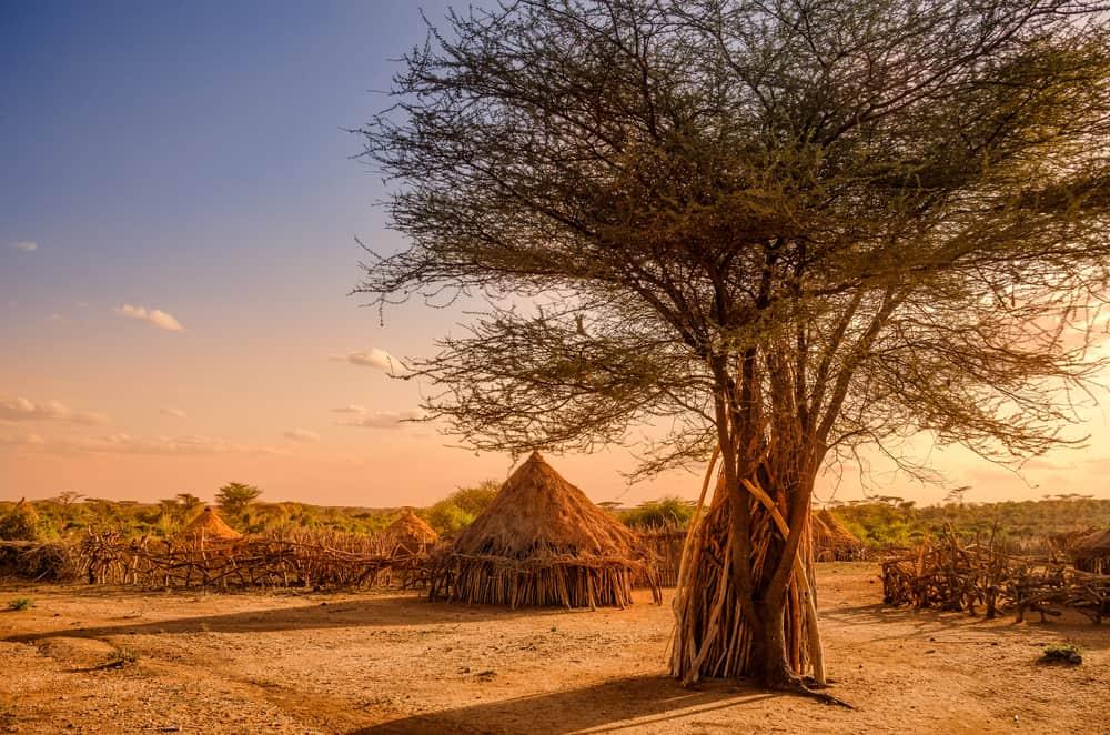 Hamer Köyü Etiyopya