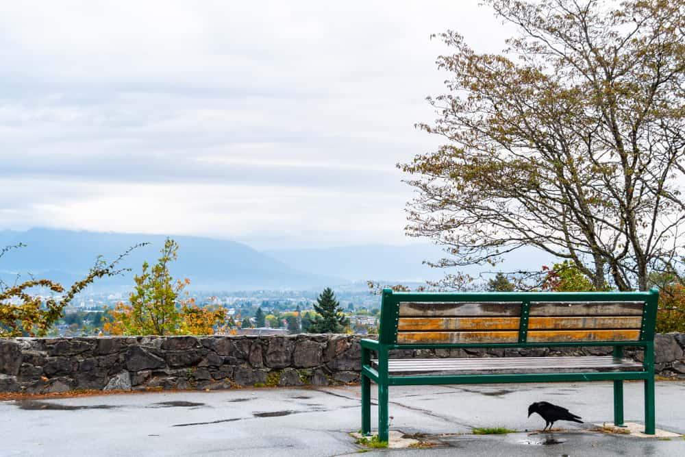 Kraliçe Elizabeth Parkı Vancouver