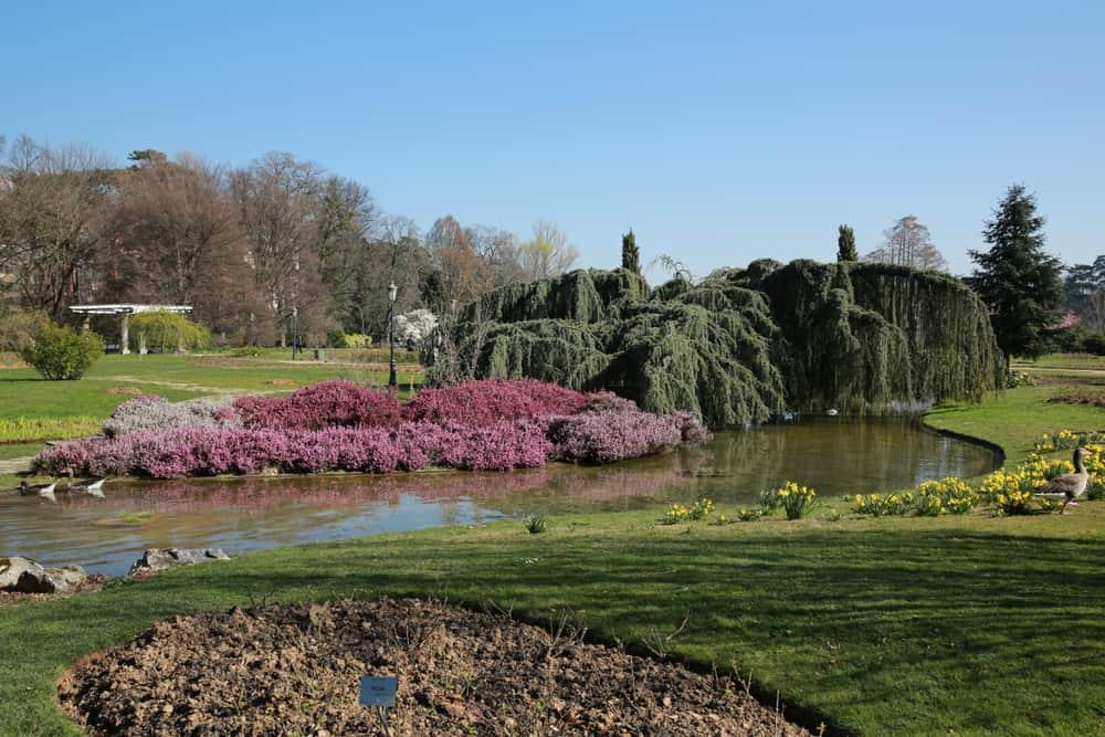 Tete d'Or Parkı (Parc de la Tete d'Or) Lyon
