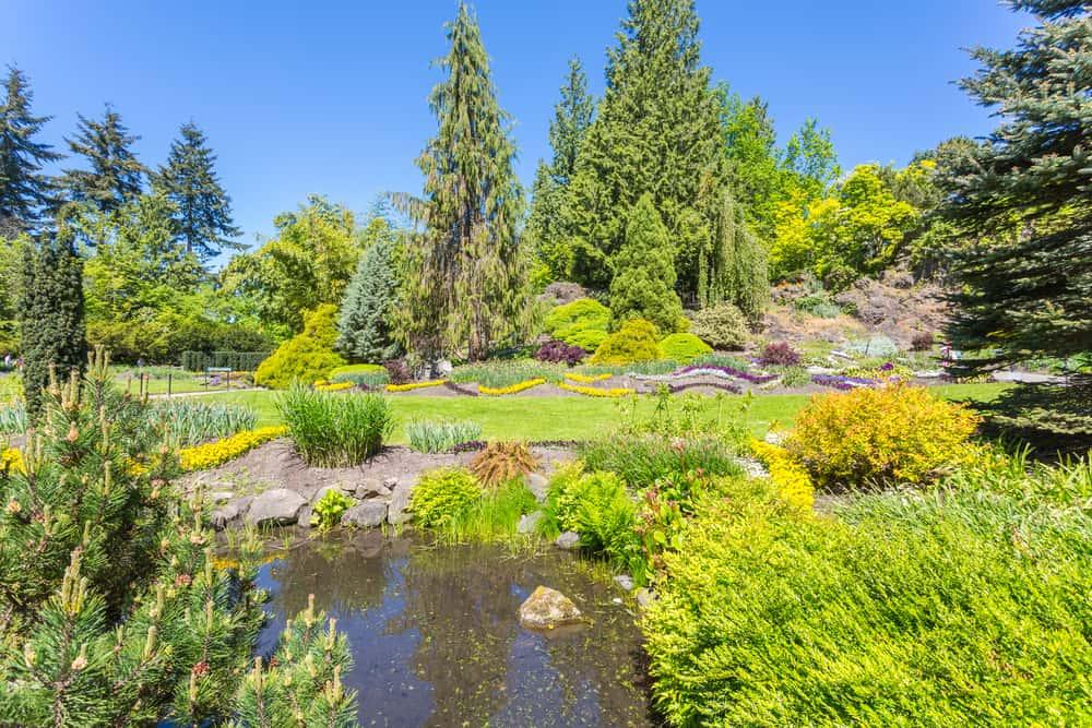 Queen Elizabeth Parkı Vancouver