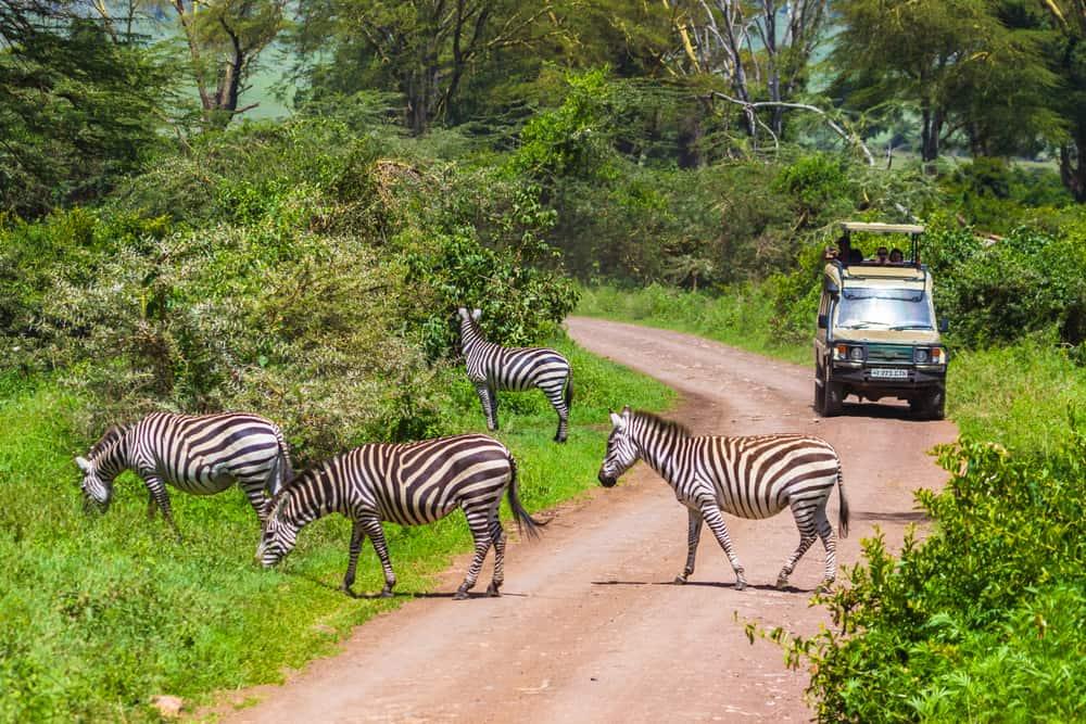 Tanzanya Arusha