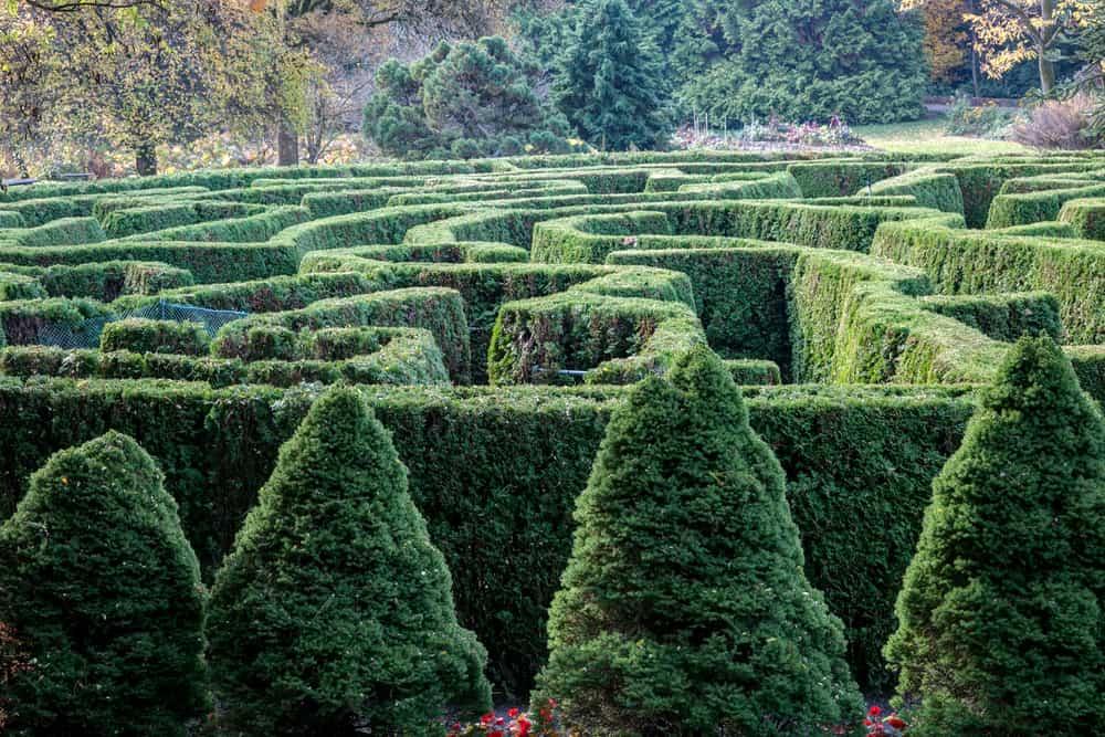 VanDusen Botanik Bahçesi Vancouver