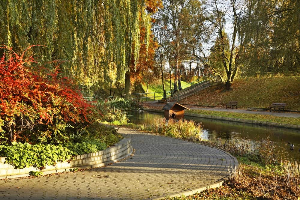 Dolina Marzeń Parkı Torun Polonya