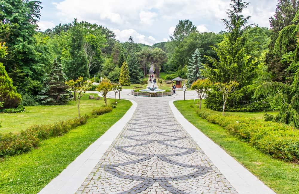Atatürk Arboretumu'nda Yapılacak Şeyler