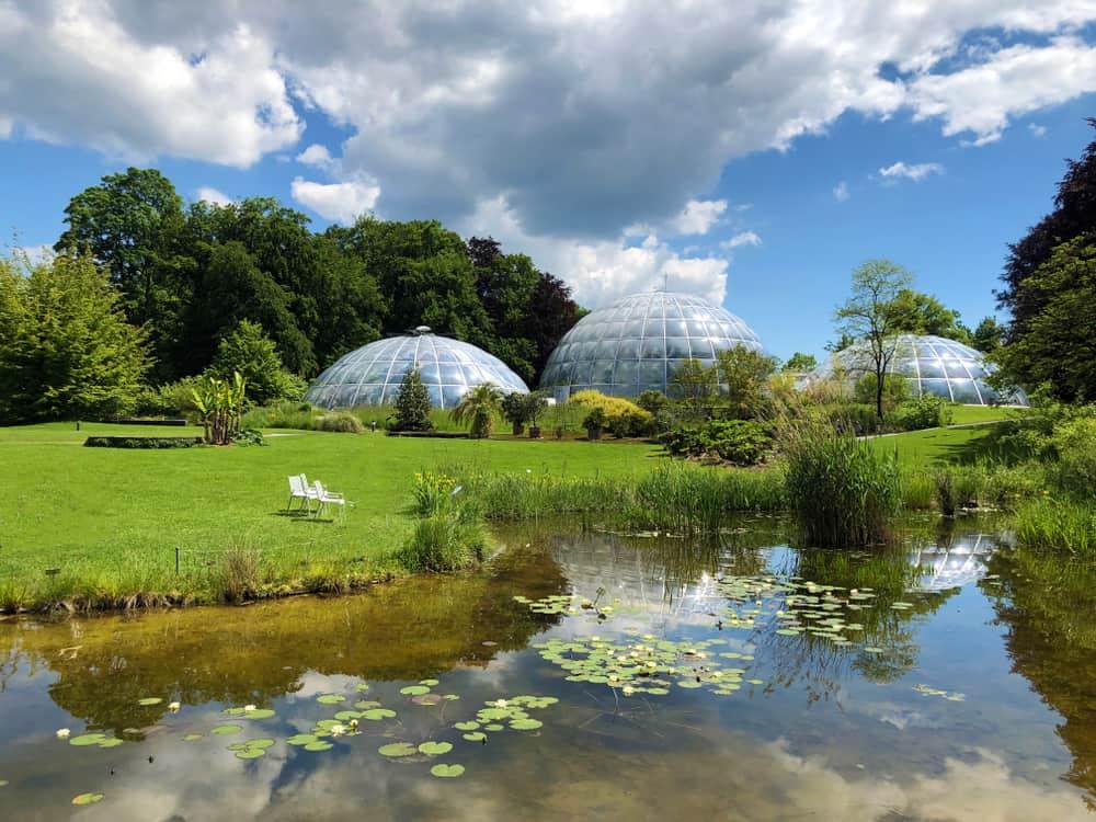 Zürih Botanik Bahçesi