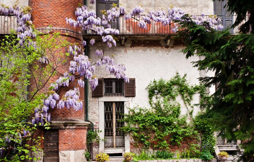 Brera Botanik Bahçesi Milano