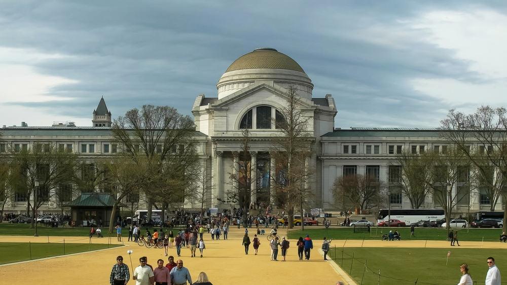 Smithsonian Ulusal Doğa Tarihi Müzesi, Washington, ABD