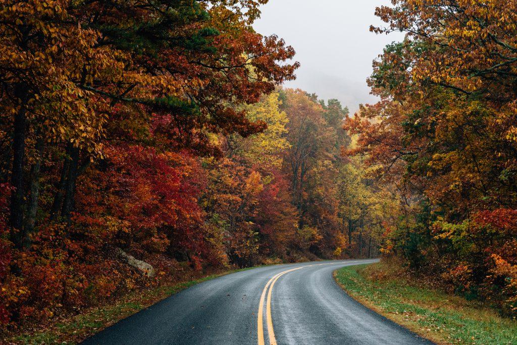 Blue Ridge Parkway Virginia Amerika Birleşik Devletleri