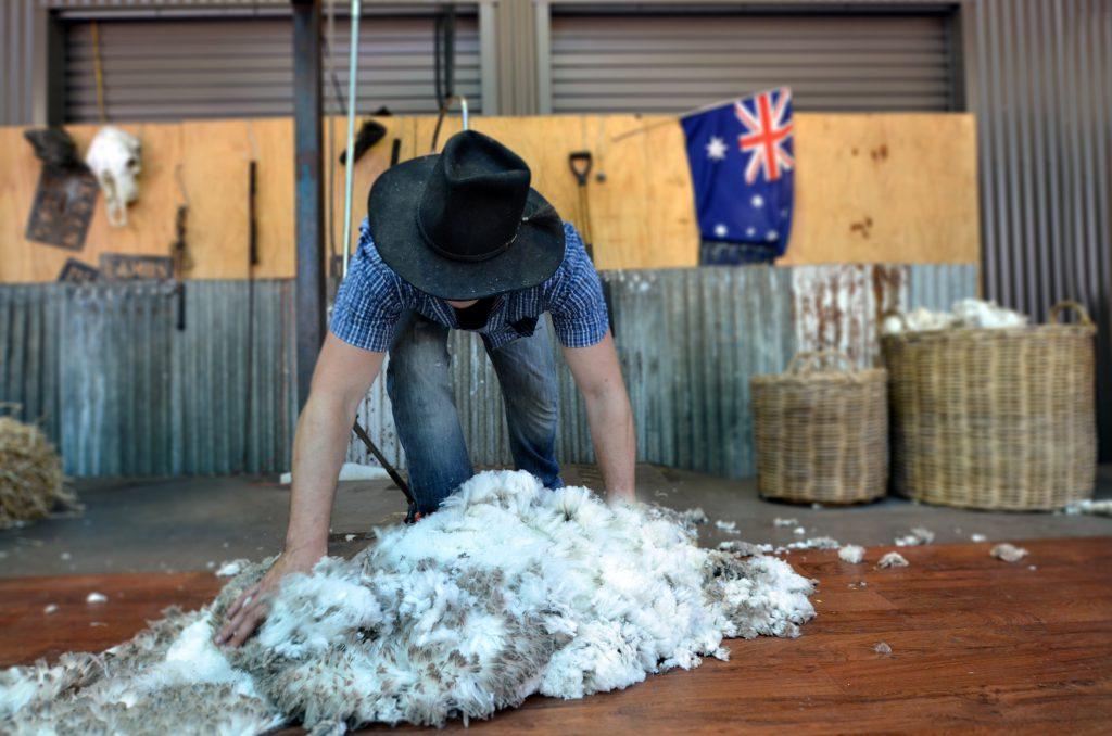 Avustralya Çalışma Hayatı