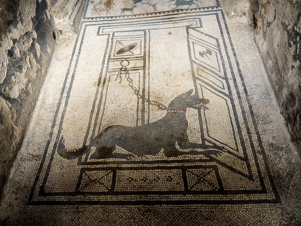 CAVE CANEM (Köpeğe Dikkat Et) yazılı mozaik, Pompeii