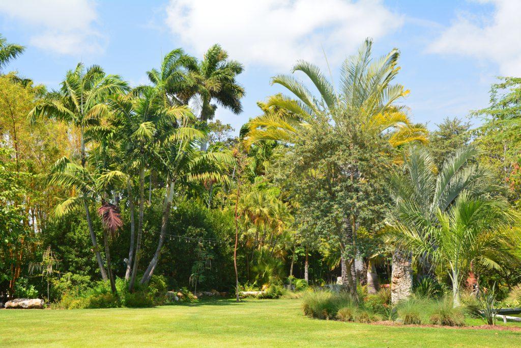 Miami Beach Botanik Bahçesi
