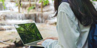 Online Milli Park