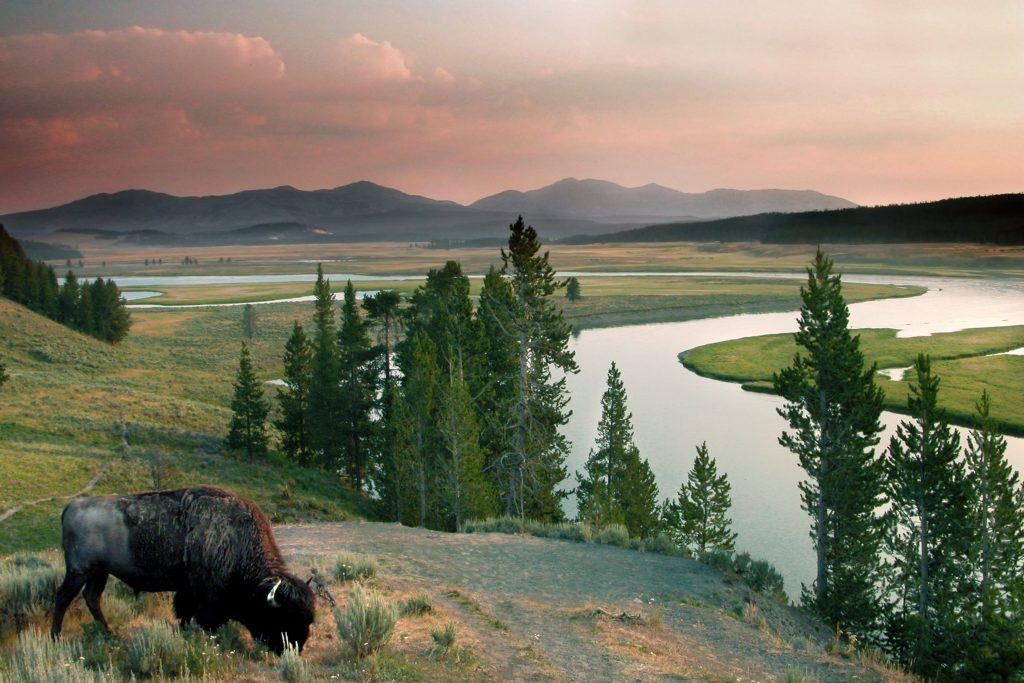 Yellowstone National Park (Amerika)