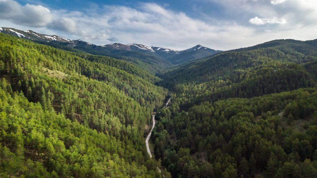 Akdağmadeni Ormanları, Yozgat