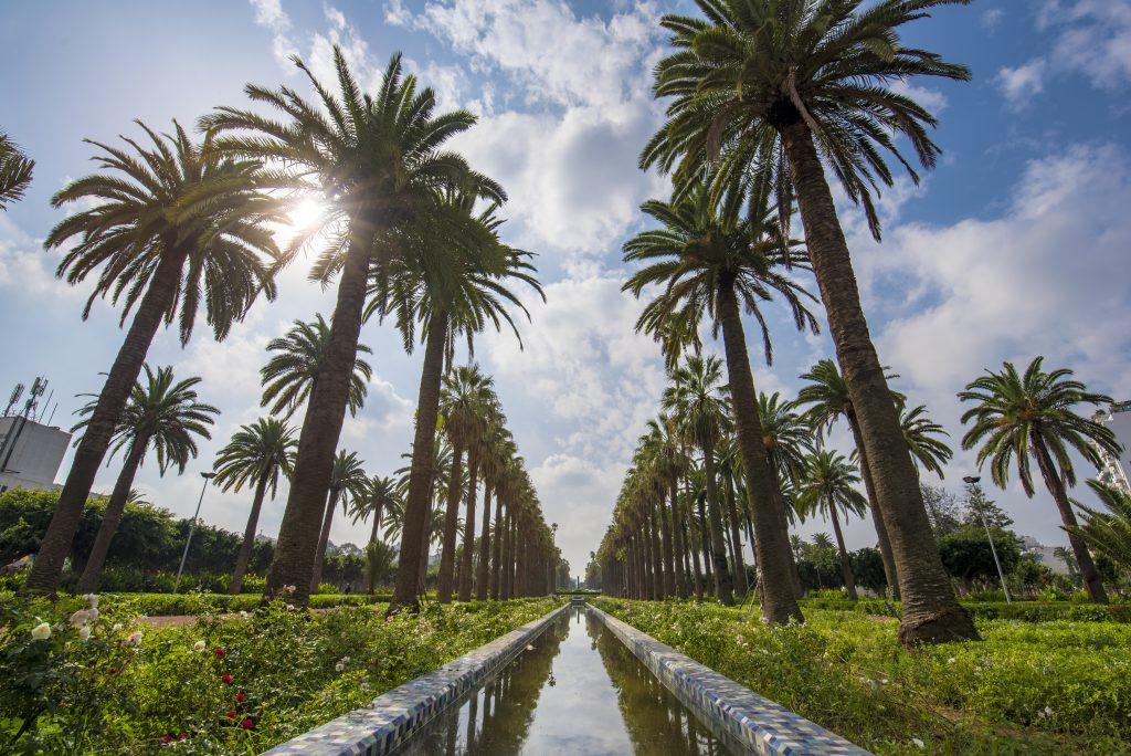Ligue Arabe Parkı, Kazablanka