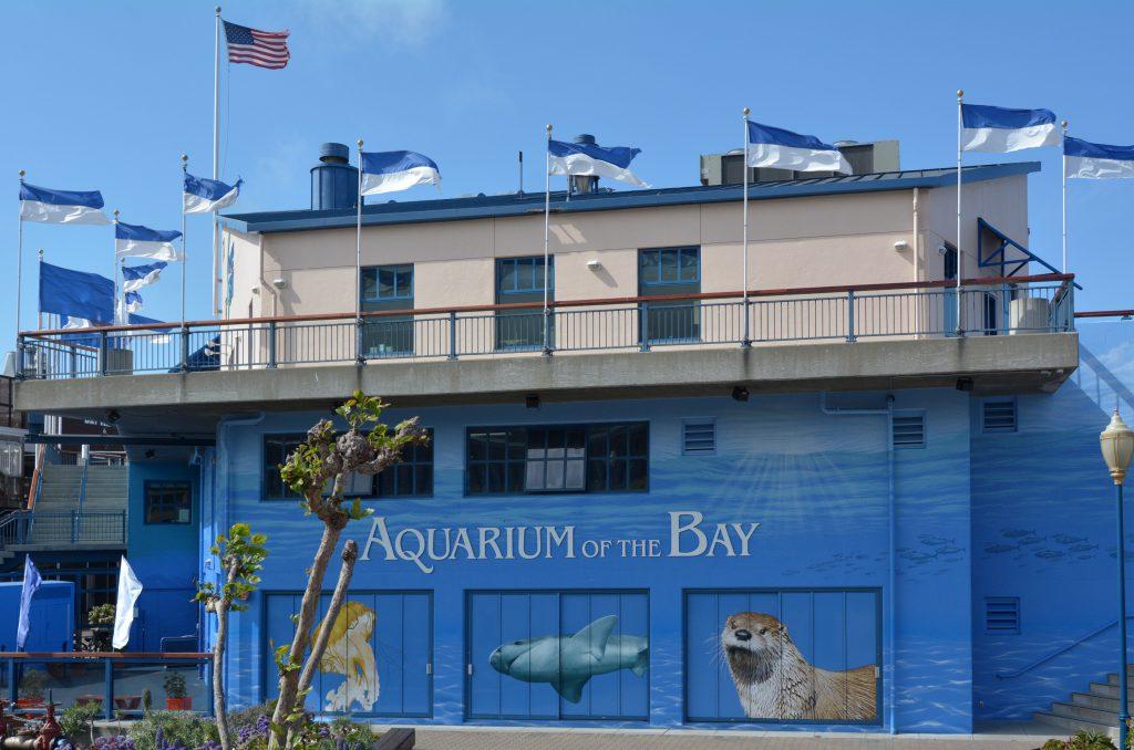 Aquarium of the Bay , San Francisco