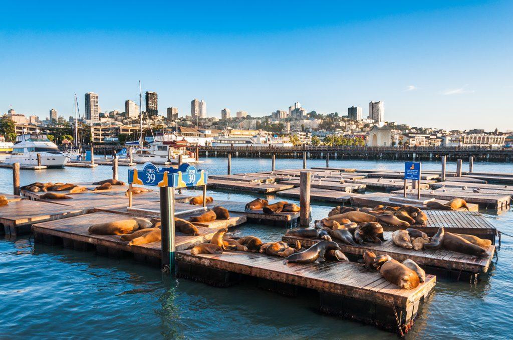 Fisherman's Wharf & Pier 39, San Francisco